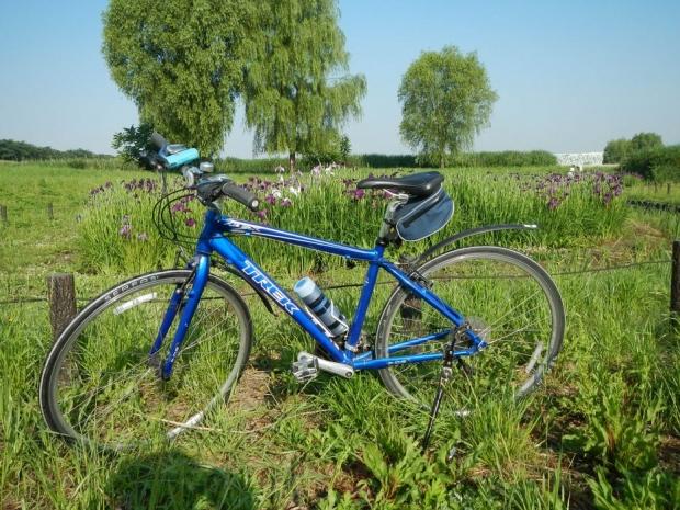 サイクリング6-1 (2)