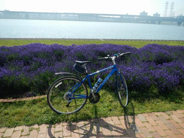 サイクリング6-1 (12)