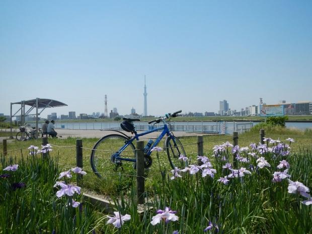 サイクリング6-1 (29)