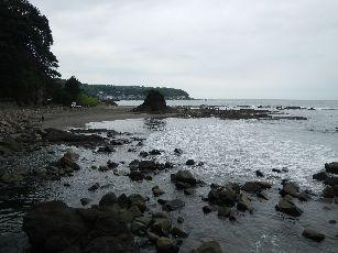 今井浜海岸 (9)