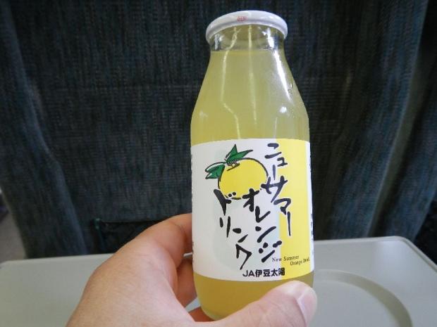伊豆温泉ツアー帰り (2)