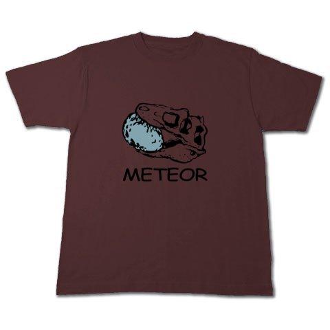 Meteor_t