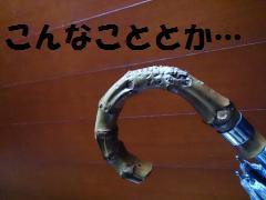 DSC_1025_convert_20140305130700.jpg