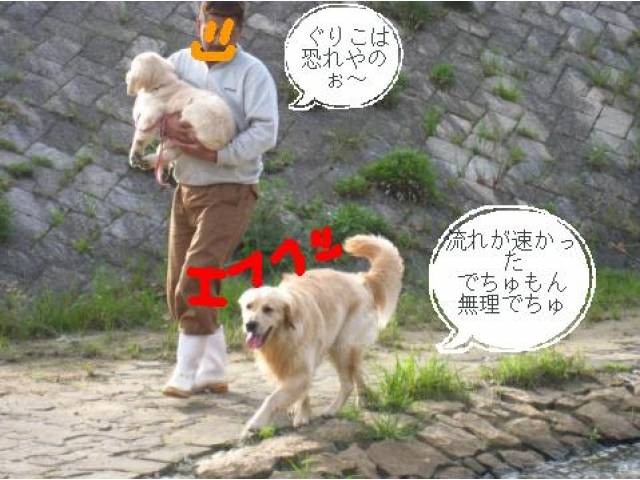 mm1304518168.jpg