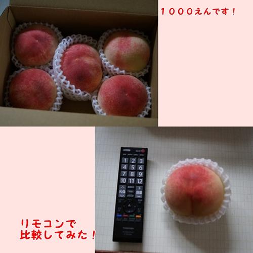 1401_201407142237495d7.jpg