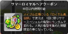 20140628ss1.jpg