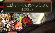 Maple140617_231331.jpg