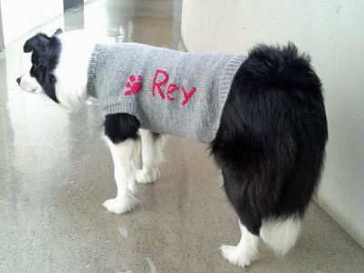 reyたんセーター3