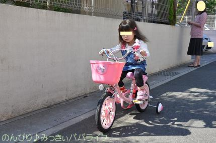 bicycle3year2.jpg