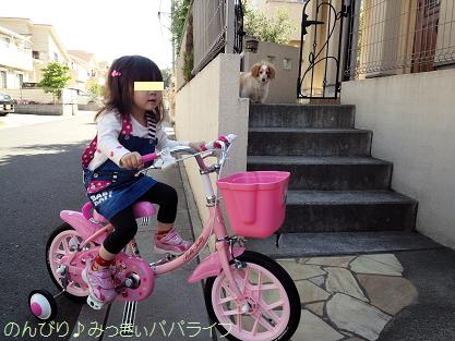 bicycle3year3.jpg