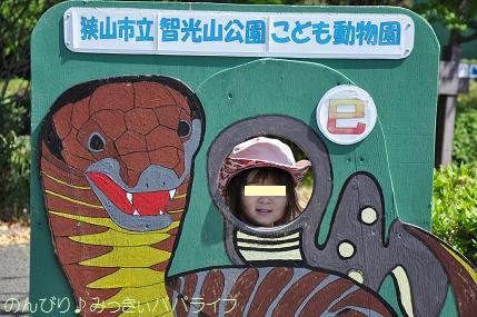 chikozoo20140502.jpg