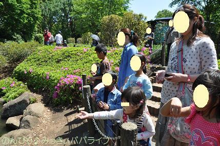 chikozoo20140515.jpg