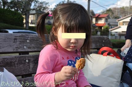 hanami201408.jpg