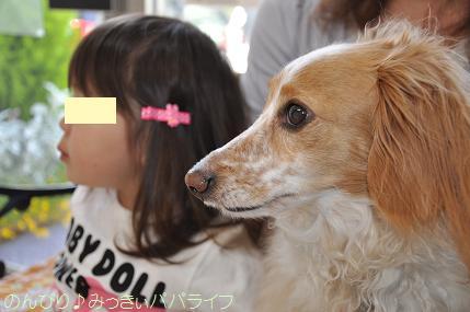 mickeyshinsatsu20140501.jpg