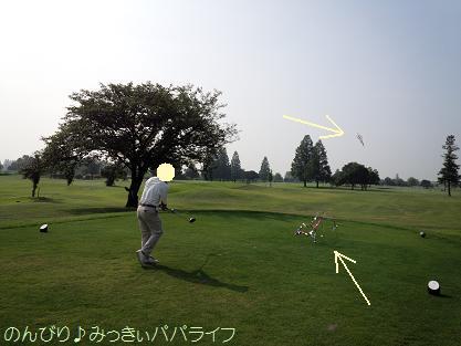 shikyushikigolfball1.jpg