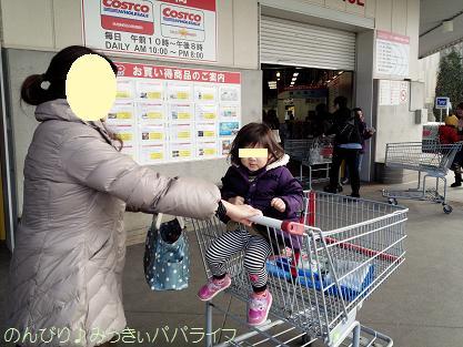 shoppingcart1.jpg