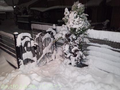 snow2014021401.jpg