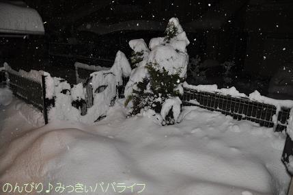 snow2014021502.jpg
