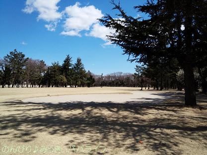 tamamura02.jpg