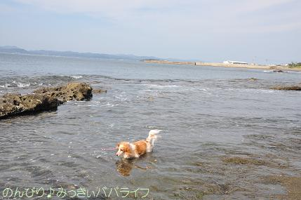 tateyama201407008.jpg