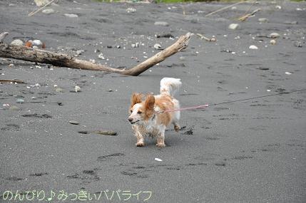 tateyama201407031.jpg