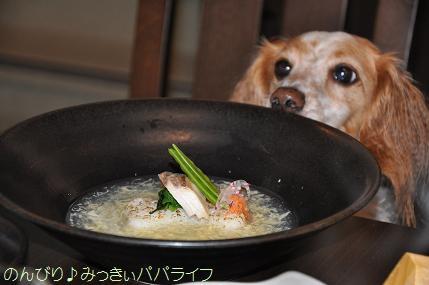tateyama201407037.jpg