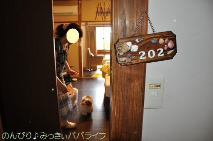 tateyama201407039.jpg