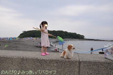tateyama201407040.jpg