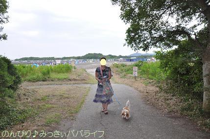 tateyama201407043.jpg