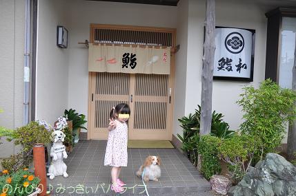tateyama201407046.jpg