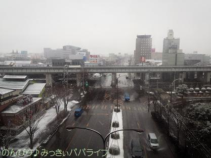 tsubamesnow201402.jpg