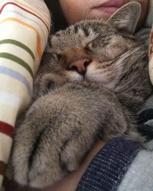 そこで寝てるキミw