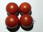 トマト140716