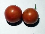 トマト140719