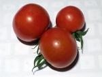 トマト140721