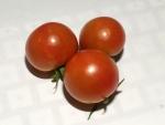 トマト140725