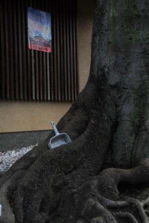 伏見稲荷402193