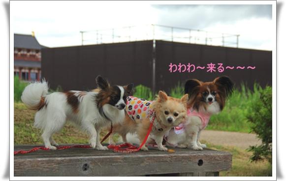 平城京4061210