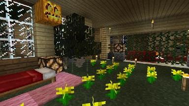 miki部屋2
