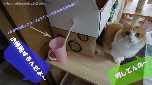 syori001_2