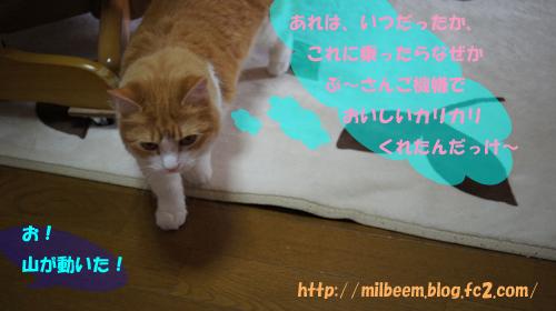 taisoku006_2.jpg
