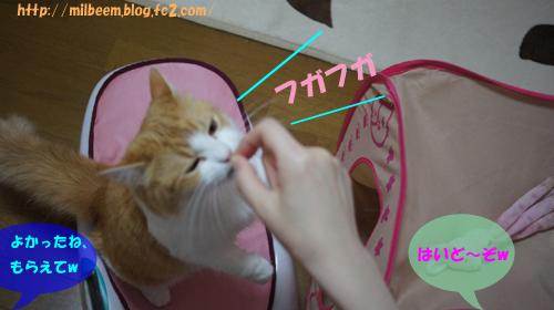 taisoku013.jpg