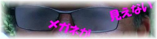 rDSC140819306-1