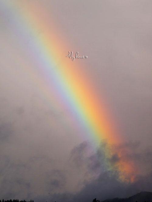 虹の彼方2