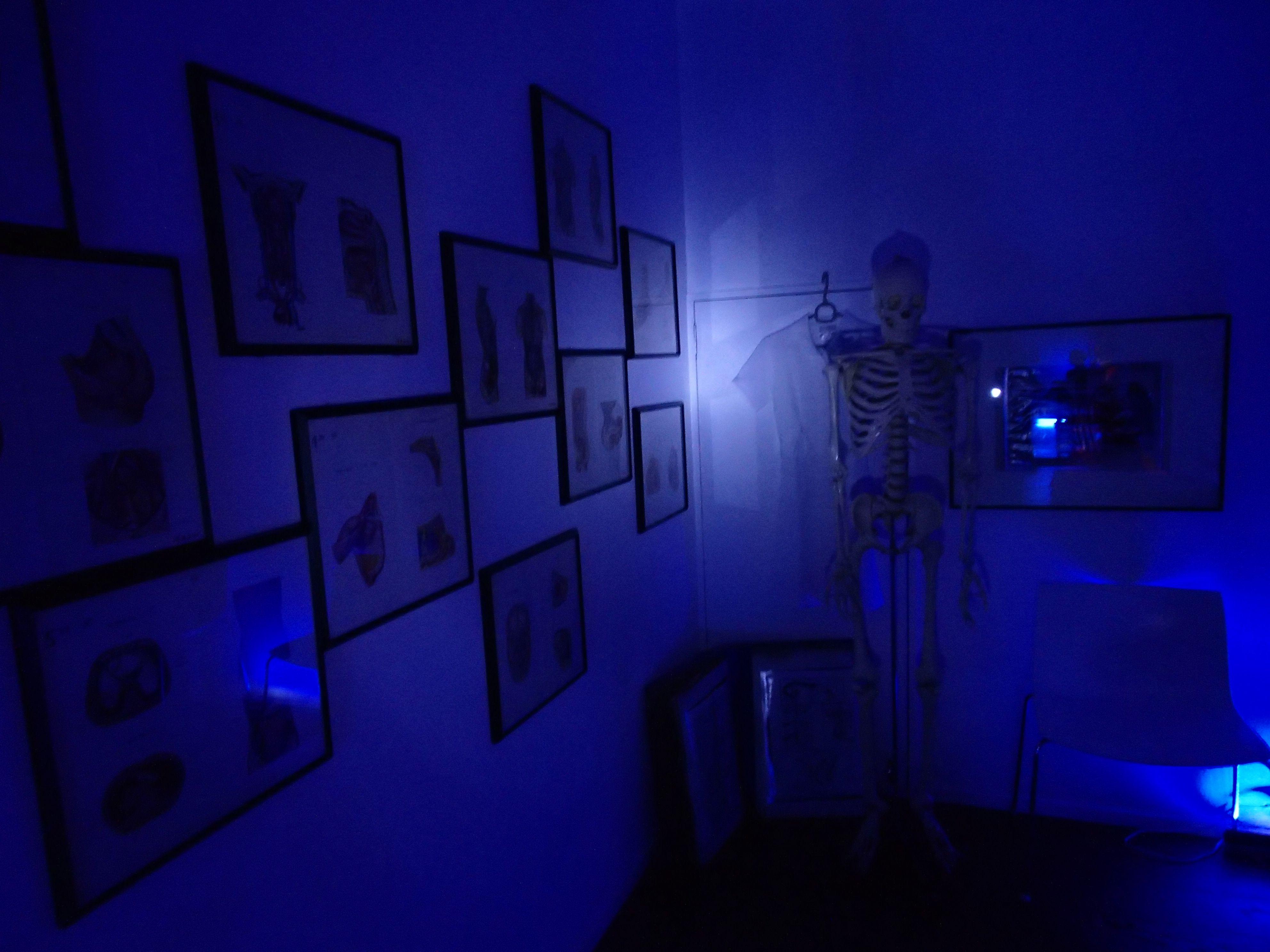 医療器具展@ギャラリー新宿座~メス・ハサミ・注射器・人体模型・骨格標本……医療現場をサポートする器具の魅力を堪能できる展覧会~
