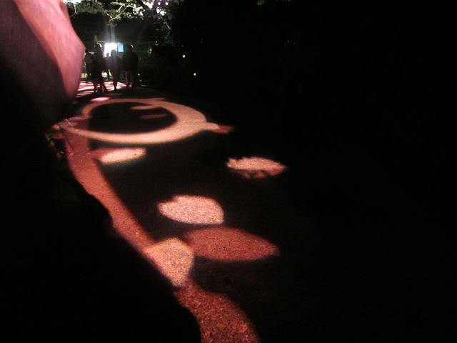 2014夜桜4