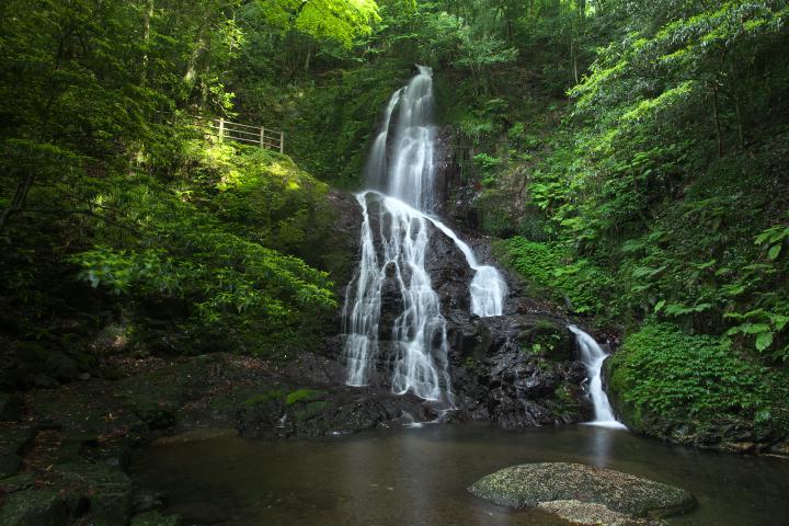 秋芳白糸の滝1405