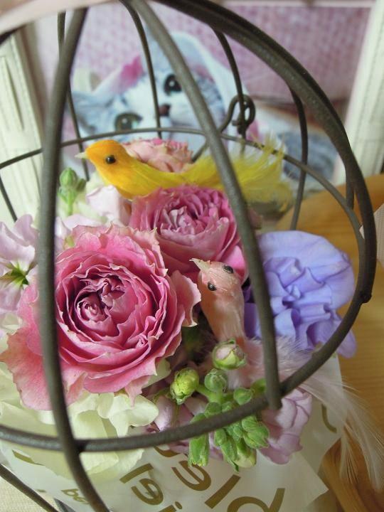 20140303お花と鳥