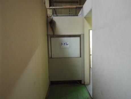 DSCF2720.jpg