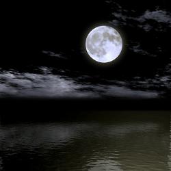 月光-250